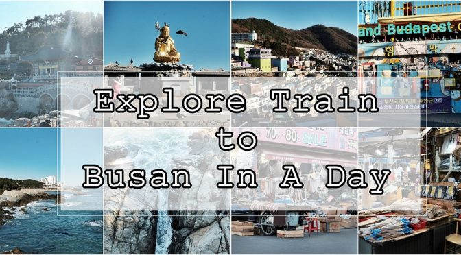 [KOREA TRAVELS] Train to Busan In A Day- Haedong Yonggunsa , Gamcheon Cultural Village & Jalgachi Fish Market