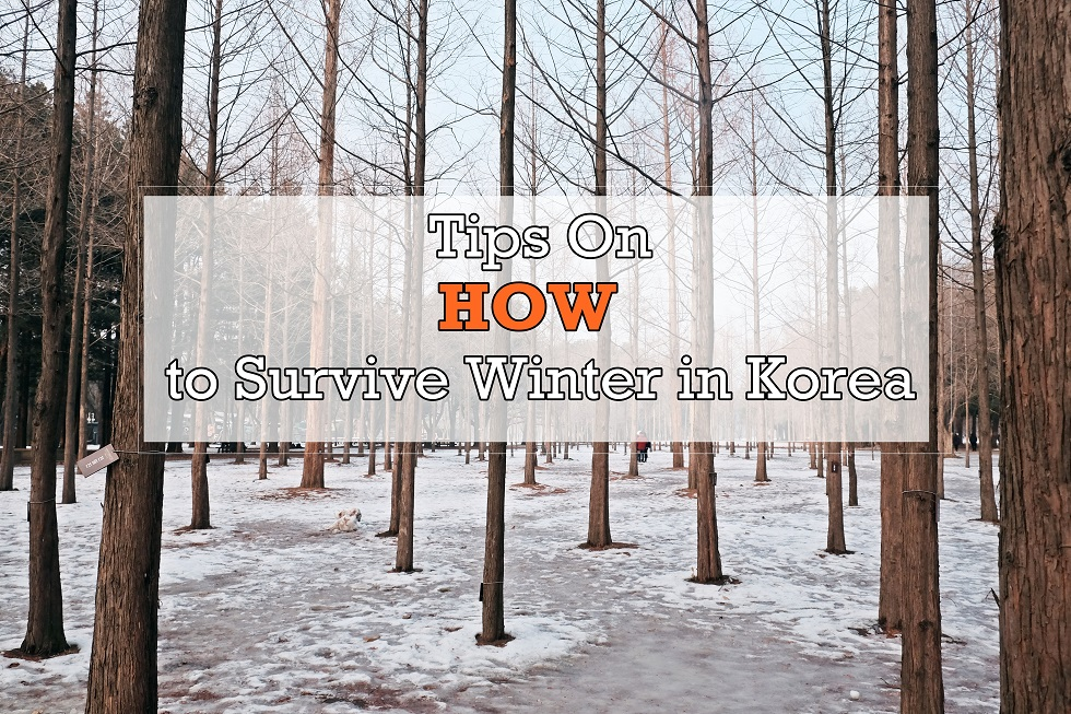[TRAVEL TIPS] How to Survive Winter in Seoul,Korea