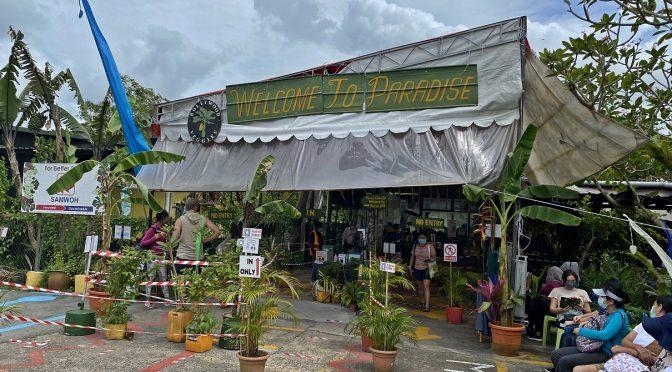 [EXPLORE SG] Bollywood Veggies Organic Farm At Kranji Singapore