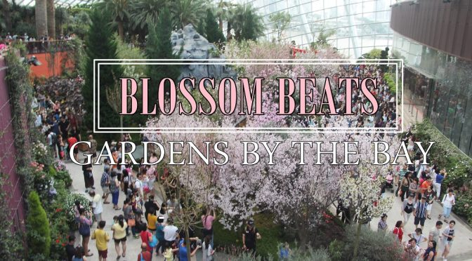[EXPLORE SG] SAKURA (CHERRY BLOSSOMS) IN BLOOMS AT GARDENS BY THE BAY WITHOUT PAYING FLIGHT TICKET TO JAPAN
