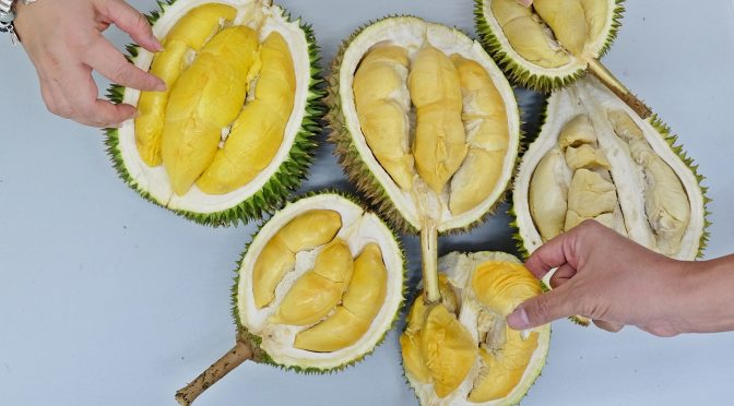 [SG EATS] Hao Chi Durian – All Types of Durian You Can find from Malaysia!